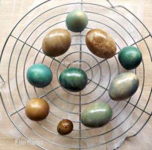 oua vopsite natural