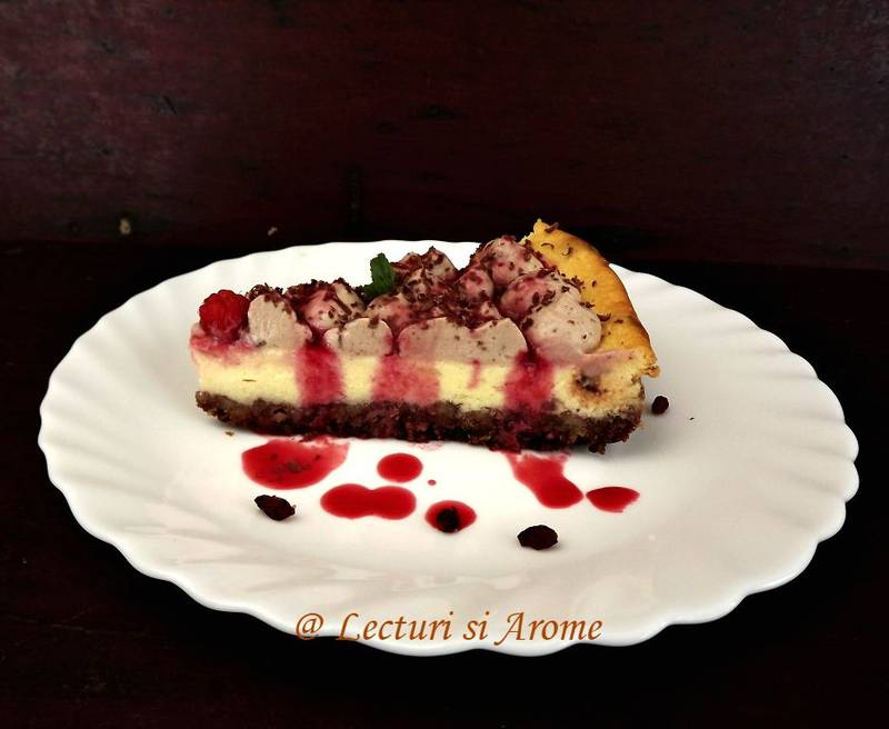 cheesecake cu agrise 2