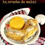 Macrou prajit in crusta de malai