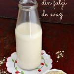 Cum sa faci lapte de ovaz in casa