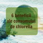 6 beneficii ale consumului de chlorella