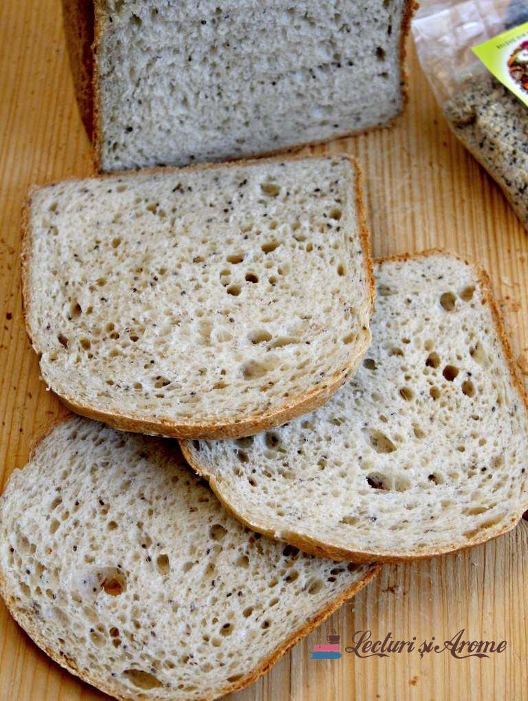 """Pâine de casă cu """"Maxifibre"""" făcută la mașina de făcut pâine"""