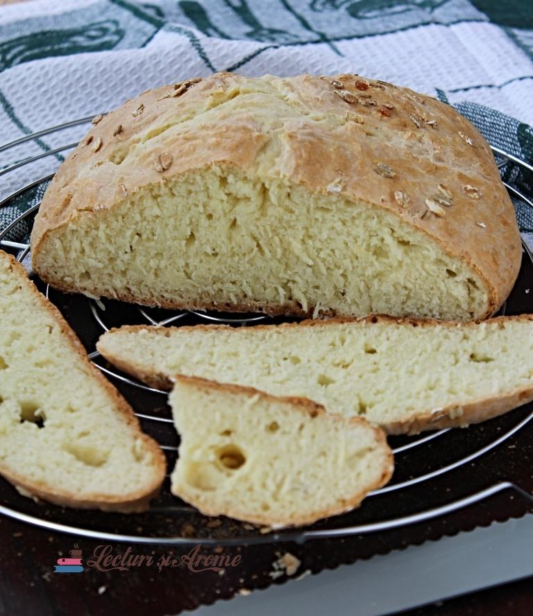 paine irlandeza cu bicarbonat de sodiu