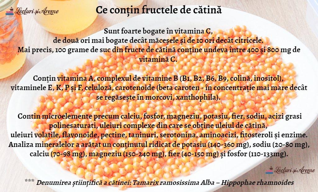 ce contin fructele de catina