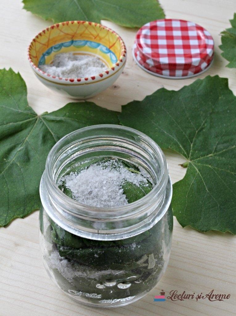 frunze de viță de vie la borcan cu sare